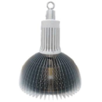 AH60AY-LED NICHIA A CROCHET PLAFOND HAUT 60W BLANC CHAUD :: + infos - Devis