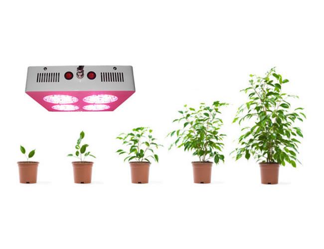 HOR180-PANNEAU LED POUR PLANTES 180W :: + infos - Devis
