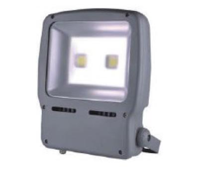 PROJA100Y-PROJECTEUR 220V 100W BLANC CHAUD 120 DEGRES :: + infos - Devis