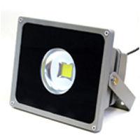FLS30AW :: PROJECTEUR LED BLANC PUR  220V 30W